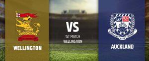 Wellington vs Auckland Super Smash T20 Match Prediction